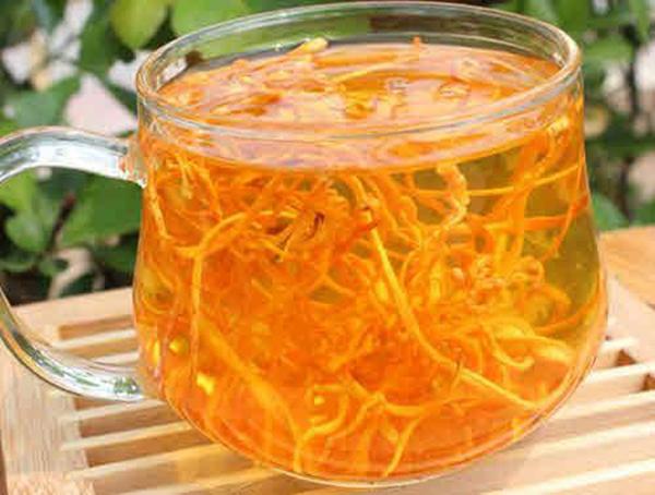 Trà đông trùng hạ thảo thức uống vàng cho sức khỏe