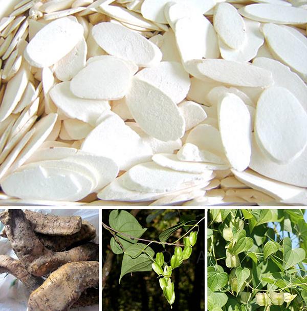 Nguyên liệu đông trùng hạ thảo hầm chim bồ câu