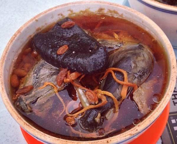Bồ câu hầm đông trùng hạ thảo - món ngon bổ dưỡng dễ làm
