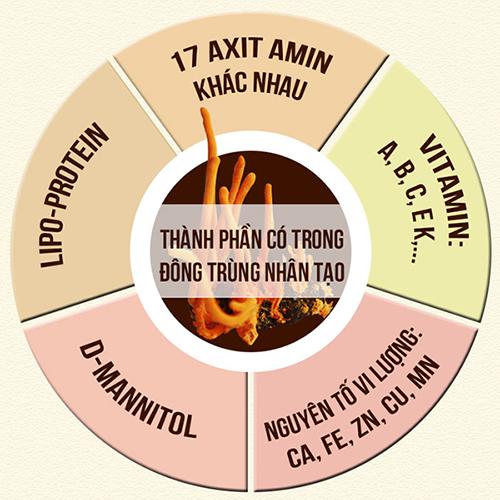 thành phần của đông trùng hạ thảo