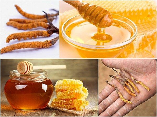 Cách sử dụng đông trùng hạ thảo ngâm mật ong