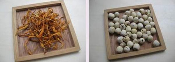 Nguyên liệu súp đông trùng hạ thảo hầm hạt sen