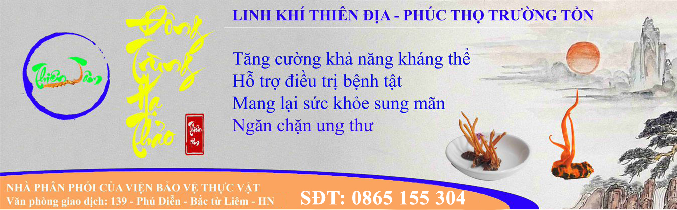 banner-web-dong-trung-ha-thao